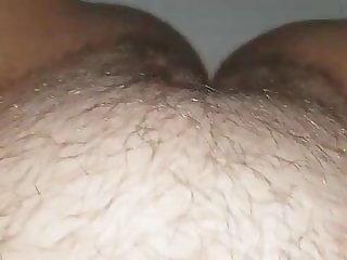 berbulu